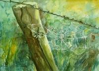 Spinnennetz 1994 36x48.jpg