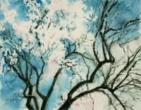 013 Mandelbaum Blütenkrone 2003 40x50.jpg